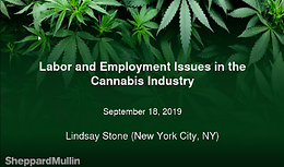 Cannabis Webinar Wednesday: Labor and Employment Issues in the Cannabis Industry