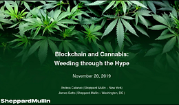 Cannabis Webinar Wednesday: Blockchain and Cannabis - Weeding Through the Hype