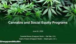 Cannabis Webinar Wednesday - Cannabis and Social Equity Programs