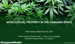 Cannabis Webinar Wednesday - Intellectual Property in the Cannabis Space