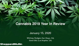 Cannabis Webinar Wednesday: Cannabis 2019 Year In Review