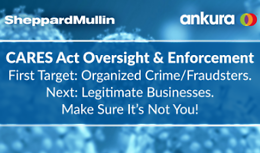 CARES Act Oversight & Enforcement